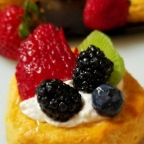 Biscuit Fresh Fruit Tarts